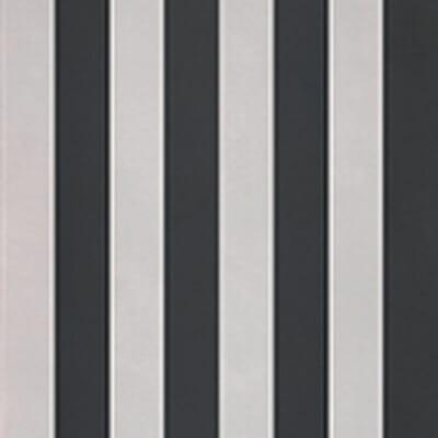 evolution stripes a