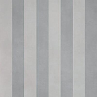 evolution stripes b