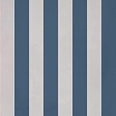 evolution stripes d